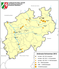 Karte: Ambrosiavorkommen in NRW