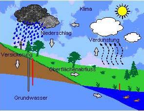 Darstellung vom Niederschlag zum Grundwasser