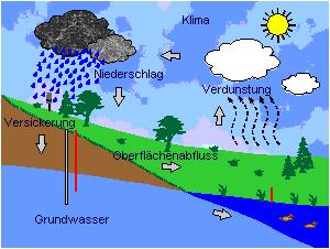 Grafische Darstellung des Wasserkreislaufs