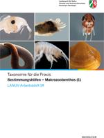 Taxonomie für die Praxis Bestimmungshilfen - Makrozoobenthos